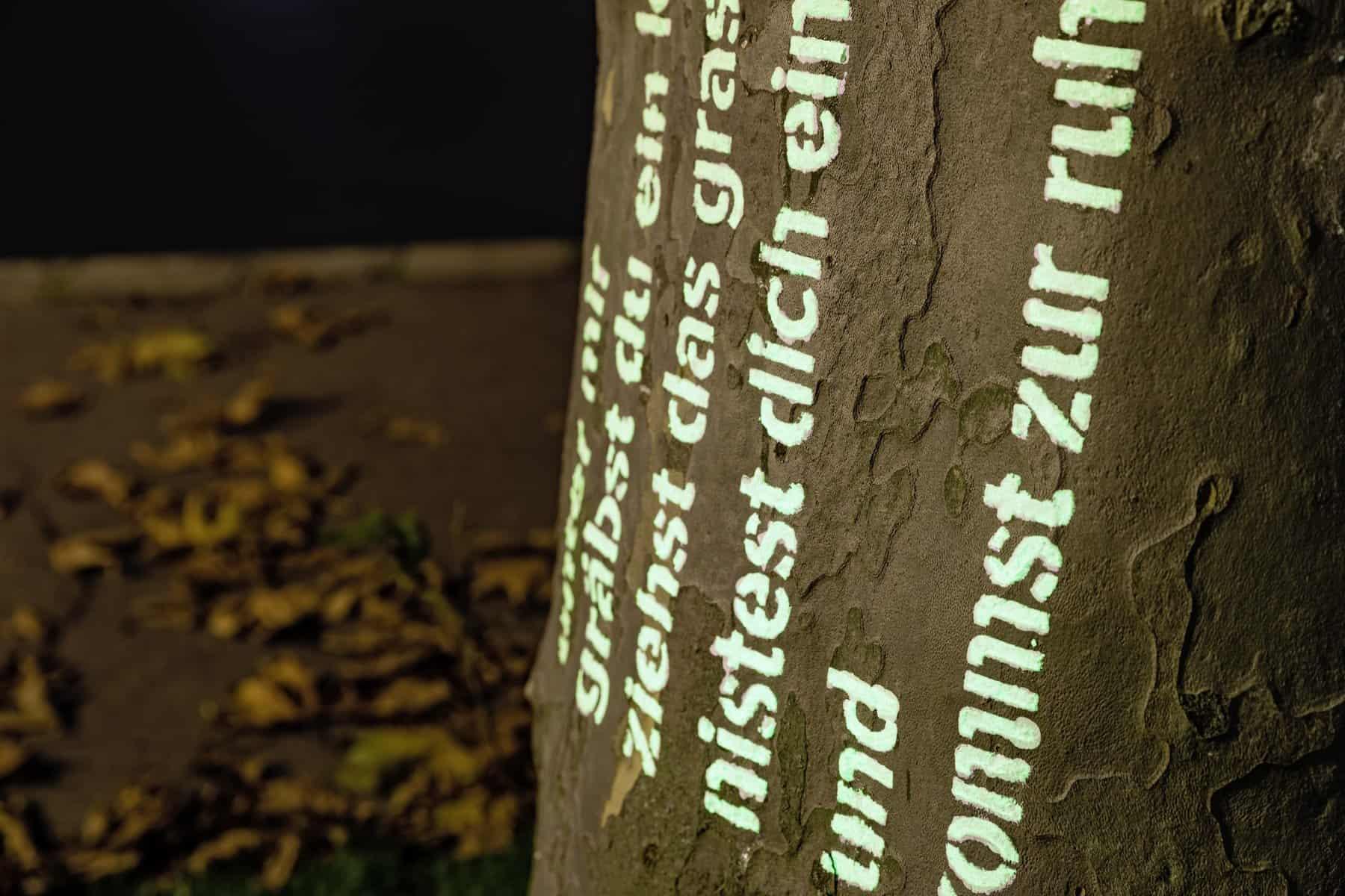 Rebecca Koellner: Tag und Nacht, Baumbeschriftungen